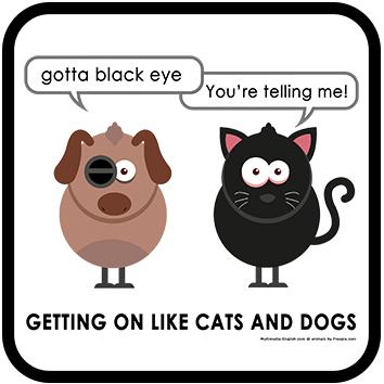 Gotta black eye