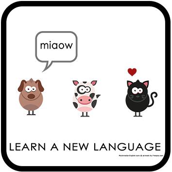 Languages make friends
