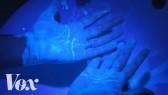 How soap kills the coronavirus (Vox)