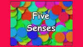 The Five Senses Song (Silly School Songs)