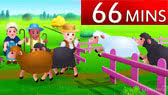 Nursery Rhymes Collection -66m (ChuChu TV)