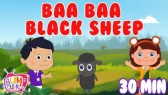 Baa Baa Black Sheep Poem | 30 Min Non Stop | Nursery rhyme (Bumcheek TV)
