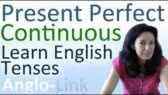 Present Continuous / Present Perfect Continuous (Anglo-Link)